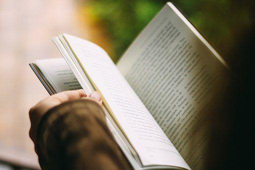 imagen-leyendo-un-libro