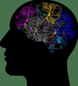 cabeza-humana-en-negro-con-neuronas-de-colores