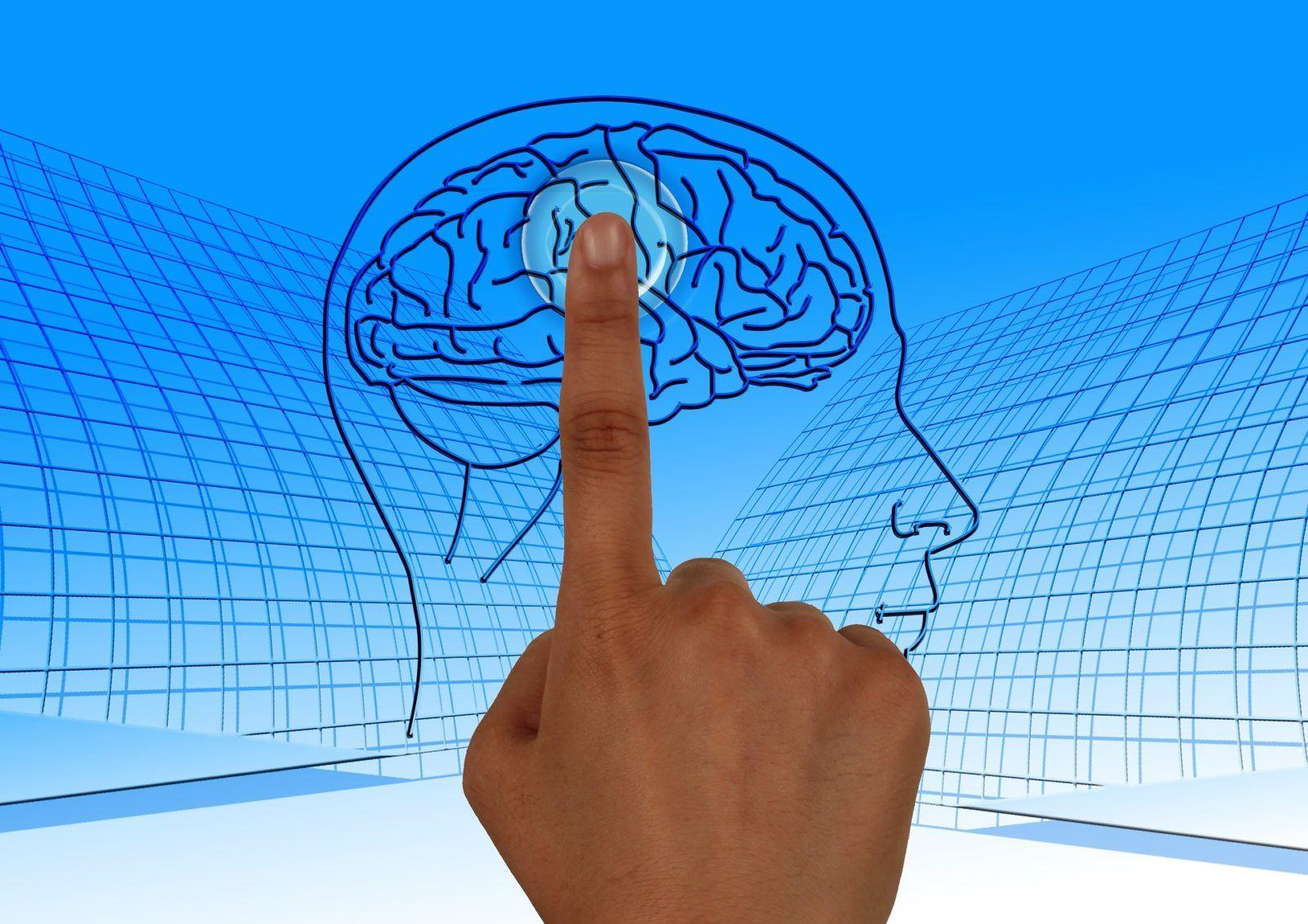 dedo-pulsando-la-imagen-de-un-cerebro-en-pantalla